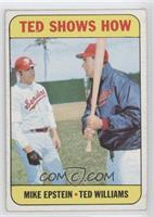 Mike Epstein, Ted Williams