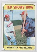 Mike Epstein, Ted Williams