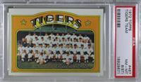 Detroit Tigers Team [PSA8NM‑MT(ST)]