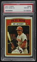 Pete Rose (In Action) [PSA 8 NM‑MT]