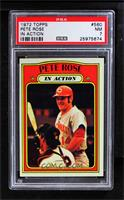 Pete Rose (In Action) [PSA 7]