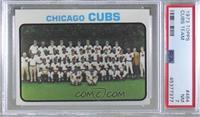 Chicago Cubs Team [PSA7NM]