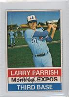 Larry Parrish (Black Back)