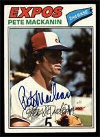 Pete Mackanin [Altered]