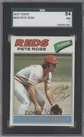 Pete Rose [SGC 84 NM 7]