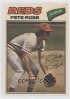 Pete Rose (Two Stars at Back Bottom)