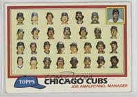 Team Checklist - Chicago Cubs [Noted]
