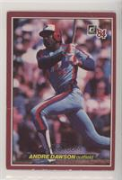 Andre Dawson [Poor to Fair]