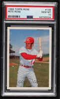 Pete Rose [PSA 10 GEM MT]