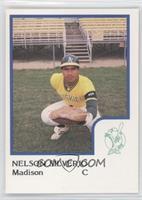 Nelson Silverio