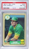 Jose Canseco [PSA8]