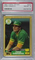 Jose Canseco [PSA8NM‑MT]