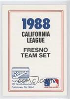 Fresno Suns Team