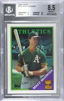 Topps All-Star Rookie - Mark McGwire [BGS8.5NM‑MT+]