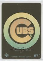 Chicago Cubs Team
