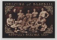 Buffalo Bisons 1887