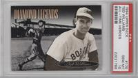 Ted Williams (dark background) [PSA 10]