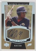 Rookie Signatures - Delmon Young /250