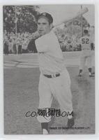 Yogi Berra #/66