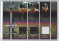 Magglio Ordonez, Carlos Lee, Mark Buehrle #/50