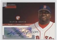 David Ortiz /247