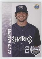 Dave Haehnel