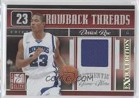 Derrick Rose /500