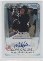 Mason Williams /500