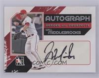 Will Middlebrooks /390 [Mint]