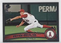 Peter Bourjos /60