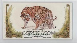 Siberian-Tiger.jpg?id=415edc9f-5352-4dcb-9482-a6059dc1b57b&size=original&side=front&.jpg