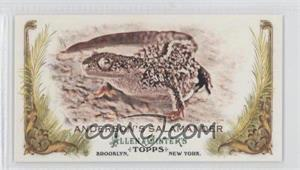2011 Topps Allen & Ginter's - Animals in Peril Minis #AP27 - Anderson's Salamander
