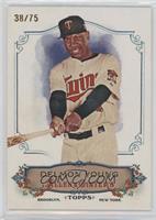 Delmon Young /75