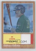 Joe Leonard /199