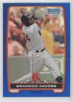 Brandon Jacobs /250
