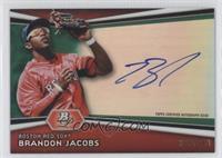 Brandon Jacobs /399