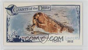 2012 Topps Allen & Ginter's - Giants of the Deep Minis #GD-14 - Bottlenose Whale