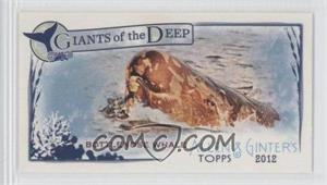 2012 Topps Allen & Ginter's - Giants of the Deep Minis #GD-14 - Bottlenose Whale