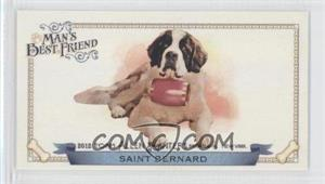 Saint-Bernard.jpg?id=e0a57b56-cda7-4684-9ab0-802b1e4a63d0&size=original&side=front&.jpg