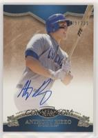 Anthony Rizzo #/235