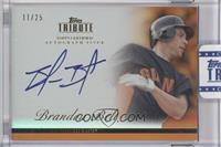 Brandon Belt /25 [ENCASED]