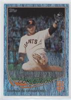 Brandon Crawford /25