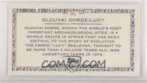 Olduvai-GorgeLucy.jpg?id=00ef6845-e6d8-4cb4-91a1-746113c317c9&size=original&side=back&.jpg