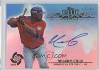 Nelson Cruz #/50