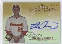 Miguel Montero /15