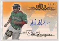 Adrian Gonzalez #8/25