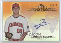 Jameson Taillon /25