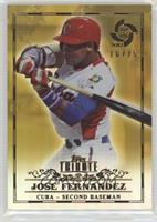 Jose Fernandez /25
