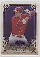 Joey Votto /650