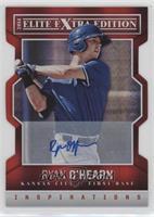 Ryan O'Hearn /100